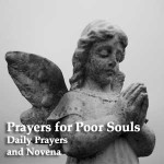 Catholic Devotional Prayers and Novenas - Mp3 Audio Downloads and Text 16
