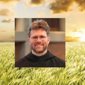 Discerning Hearts Catholic Podcasts 17